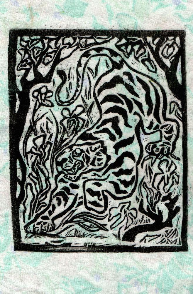 tigre007